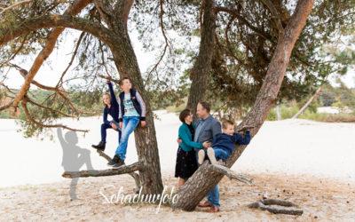 Samen in de boom